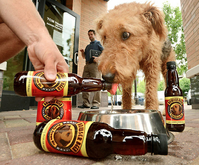 Ancient Brew Discovered in China... Bowser-beer-for-dogs-5801